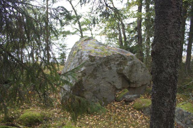 seal rock1